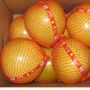 2020 Crop Fresh Honey Pomelo Fast Fresh Food For Lungs / Throat / Blood Circulation