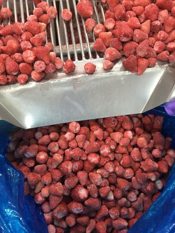 Certified Premium Quality Kinds Of Chinese IQF Frozen Fruits IQF Strawberry